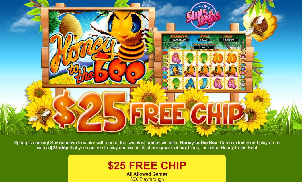 Coolcat casino codes 12
